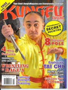 Kung Fu Taichi Cover